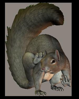 Mojo 387031 animale personaggio scoiattoli seduti Squirrel sitting NUOVO